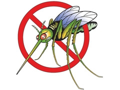 От насекомых