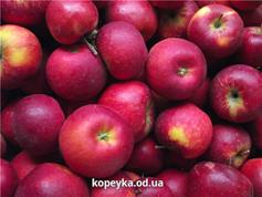 Яблука Бребурн