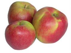 Яблука ліголь