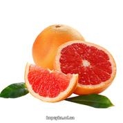 Грейпфрут jaffa