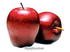 Яблука ріхард Україна