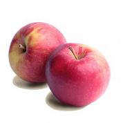 Яблука айдарет Україна
