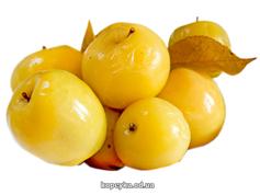 Яблука мочені