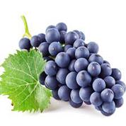 Виноград Молдова