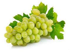 Виноград білий Італія