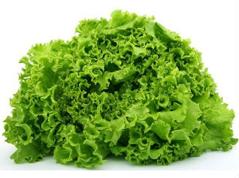 Листи салату д.кулінарії
